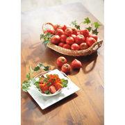 【代引不可】季節のフルーツトマトセット 3回(頒布会)