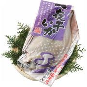 【代引不可】 日本海産 いか一夜干 その他水産物