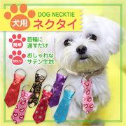 ☆気軽にわんちゃんのおしゃれが楽しめる犬用ネクタイ☆特別な日はもちろん、普段使いにも!