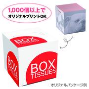 【ノベルティ】キューブBOX 80W
