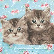 Paper+Design ペーパーナプキン 猫 CAT