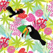 Paw Decor Collection ペーパーナプキン 鳥 オオハシ