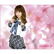 ■送料無料■AKB48 桜の栞衣装 サイズ:M・BIG