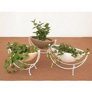 ハンモックスタンドマットミニ ミニ観葉植物/観葉植物/モダン/インテリア/寄せ植え/ガーデニング
