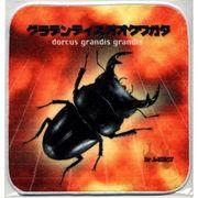 昆虫タオルハンカチ グランディスオオクワガタ