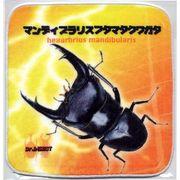 昆虫タオルハンカチ マンディブラリスフタマタクワガタ