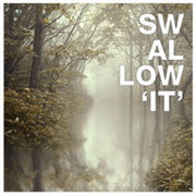 韓国音楽 Swallow(スワロー) 3集 / It (予約)