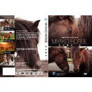 沖縄県指定天然記念物 宮古馬の一日