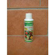 病害虫に強くなる植物保護液 ダイコーニームオイル