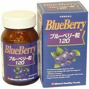 MHF ブルーベリー粒120(日本製)