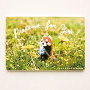 【即納】世界最小級のサプライズ☆nanoblockポストカード【レッサーパンダ】多目的