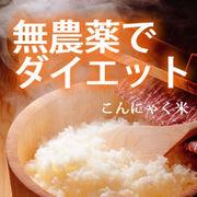 糖質制限&糖尿病食に 乾燥こんにゃく米 30袋入り あのIKKOさんがテレビで food1608
