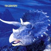 恐竜ハンドタオル トリケラトプス