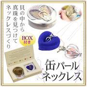 願いが叶う!淡水真珠/パールの缶詰 ネックレスキット 5~8mm プレゼントに◎  缶パールネックレス