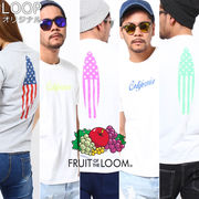 【2017SS新作】 FRUIT OF THE LOOM フルーツオブザルーム Tシャツ D / メンズ 星条旗 サーフボード スター