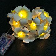LED光るプルメリア/クリスマスツリー電飾かわいいインテリア/乾電池式/ 2.2m LED20球