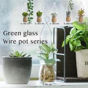 枯れない植物で作る手軽な癒し空間【グリーンガラスワイヤーポット】6種展開