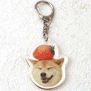 柴犬まるのキーホルダー いちご柴犬
