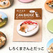 柴犬まるのコレクション缶バッジ :やわらかい白くまさんとだっこ