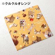 柴犬まるのハンカチタオル2 クルクルオレンジ