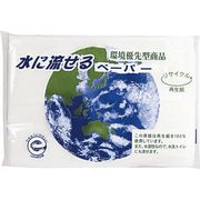 水に流せるペーパー8W(地球柄) 00000016
