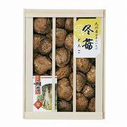 九州産原木どんこ椎茸(木箱入)