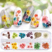 押し花セット 3タイプ 花材 ランダム ドライフラワー ジェルネイル UVレジン 封入 デコパーツ