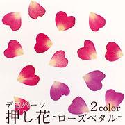 デコパーツ【31.押し花 ローズペタル】 花 ドライフラワー 薔薇 バラ 赤 レッド ピンク 紫 パープル