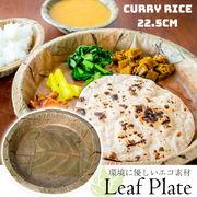 【約25枚セット】インドのリーフプレート カレーライ